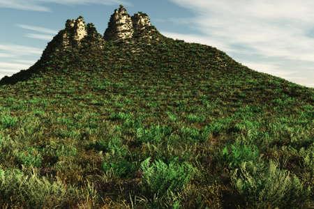 墳丘の上部につながる植物の素敵な配列。