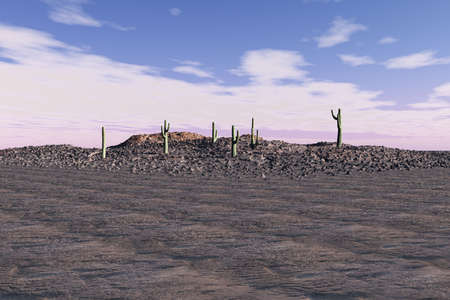 Desert scene with a few cacti scattered on top of rock rubble.