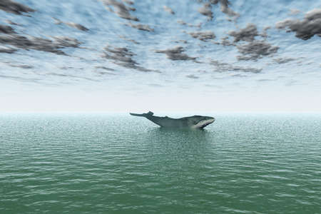 A solitary whale out at sea against a cloudy sky.