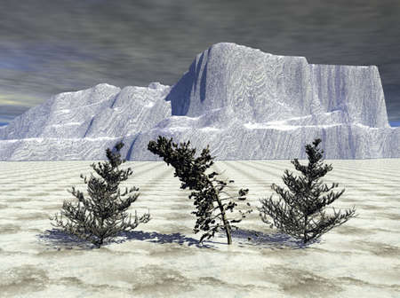 winter tree: A very frigid landscape during the height of winter. Stock Photo