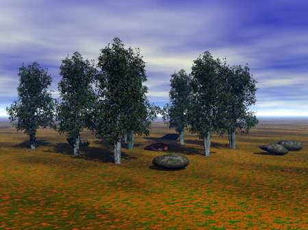 aspen: Aspen trees and some large stones highlight this rural scene.