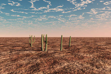sparse: A desert scene with sparse vegetation except for some cacti.