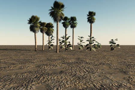 Some palm trees and plants in the middle of a desolate landscape. photo