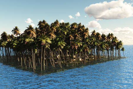 Island covered with palm trees in the ocean. photo