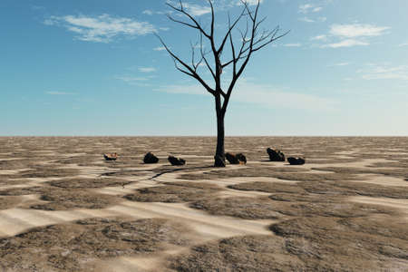 A lifeless tree in a desert expanse of sand and rubble. photo