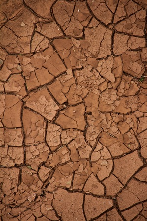 Dry, Cracked Soil with No life Remaining