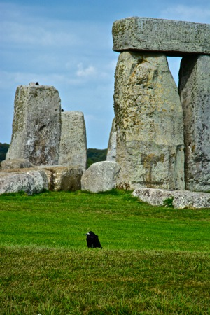 Rook in Front of the Rocks of Stonehenge On a Cloudy Summer Day
