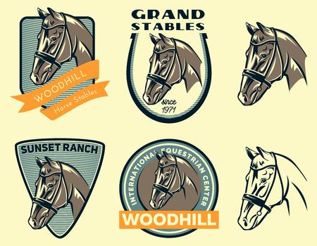Conjunto de logotipo del caballo eqestrian centro, insignias y emblemas aislados sobre fondo blanco. establos de caballos o elementos de diseño del rancho de caballos.