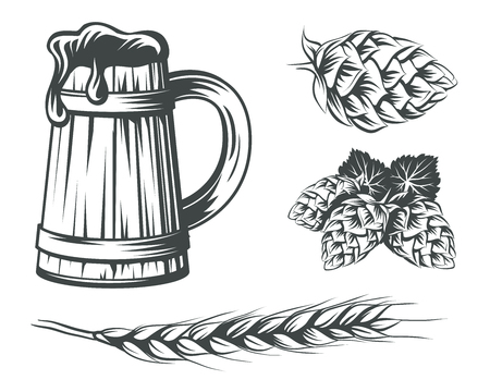 Set of beer components design elements. Beer mug with foam, hops and wheat vector illustration.