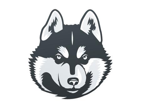 Illustrazione della testa di Husky siberiano. Archivio Fotografico - 85725382