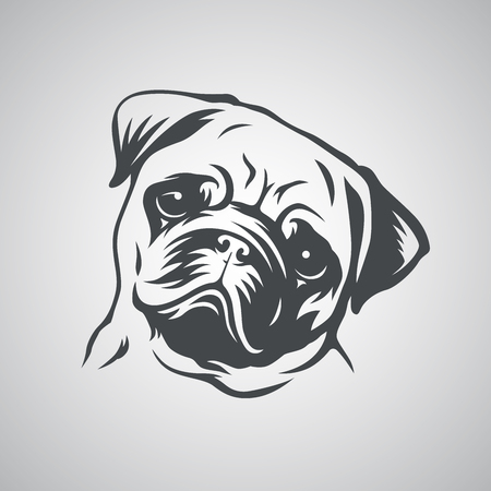 Cute pug dog head. Vector illustration.