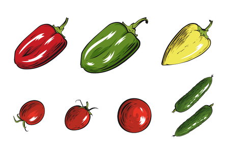 Set of vector vegetables illustration. Papper, tomato and cucumber.