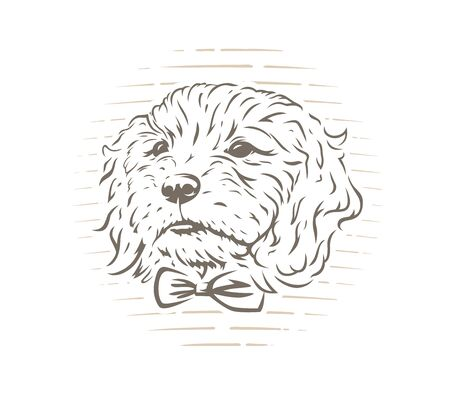 Cute cockapoo dog puppy with bow-tie vector illustration on white background. 일러스트