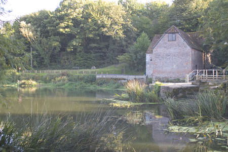 water mill:  An old countryside water mill in Dorset, England, Europe.
