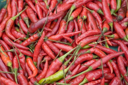spicey: Peperoncini rossi e verdi Archivio Fotografico