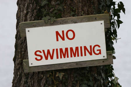 A no swimming sign nailed to a tree by a lake Stock Photo - 316575