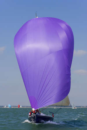A yachts racing with purple spinnaker raised and full of wind. photo