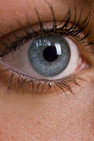 Macro shot of a female blue eye with make up