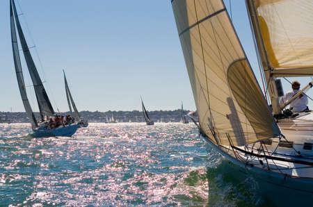 yacht race: Un grupo de yates de carreras en las primeras horas de la noche sol.
