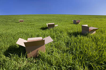 location shot: Thinking outside the box concept shot shot on location showing five empty boxes in a green field with a blue sky
