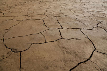 A wide angle shot of dry cracked earth. photo