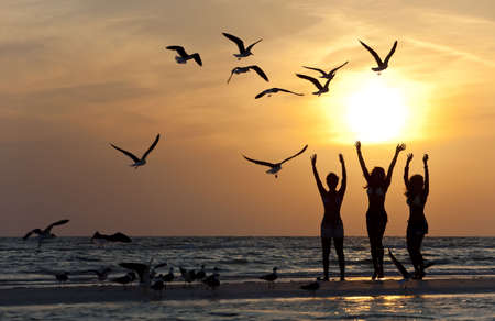 Three beautiful young women in bikinis dancing on a beach at sunset surrounded by sea gull birds all in silhouette Standard-Bild