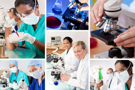 Two female medical or scientific researchers using microscopes working in a laboratory one Indian Asian one Caucasian photo