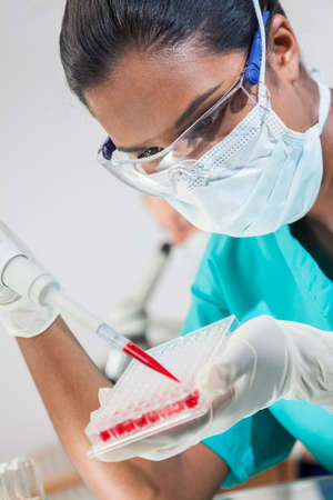 A female Asian medical or scientific researcher or doctor using a pipette and sample tray to test blood sample in a laboratory with her colleague out of focus behind her. photo