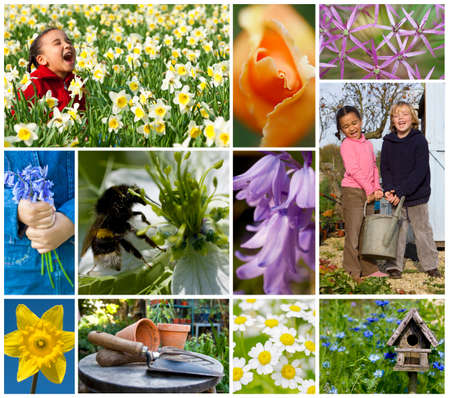 Montage of mixed race children, girl & boy playing enjoying a healthy spring garden holding a watering can together, laughing among beautiful flowers, daffodils, bluebells, roses, daisies.  photo