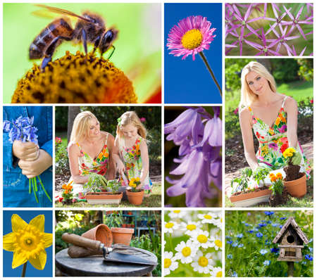 Montage of a mother and young daughter gardening in a beautiful spring garden, planting pots together and flowers coming into bloom. photo
