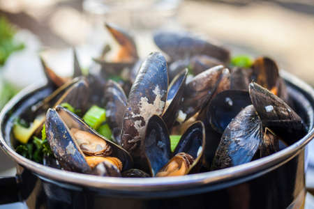 Bowl of fresh mussels moules mariniere