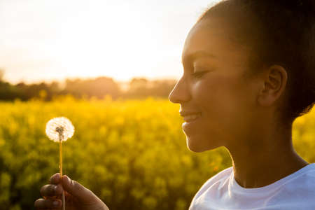 woman in field: Outdoor portrait of beautiful happy mixed race African American girl teenager female young woman smiling in golden sunset light blowing dandelion clock flower Stock Photo
