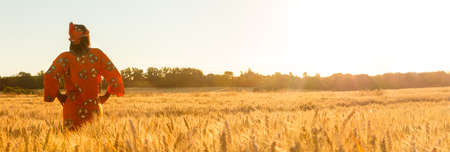 Panoramic web banner African woman in traditional clothes standing with her hands on her hips in field of barley or wheat crops at sunset or sunrise Imagens