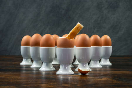 Toast soldier dipped into one boiled egg of a group of eggs in white egg cups on a wooden table Banque d'images - 114804869