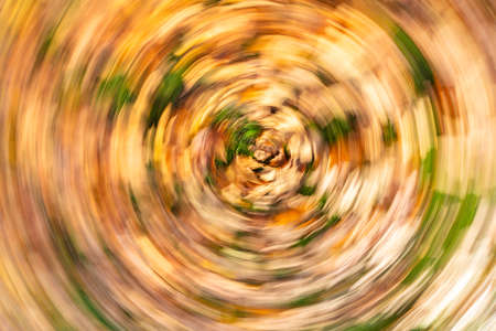 Concept vertigo slow shutter speed swirling golden autumn or fall leaves Banque d'images - 114804868