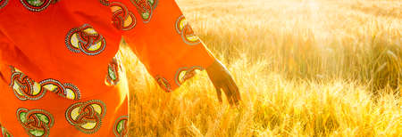 Panoramic web banner of African woman in traditional clothes walking with her hand touching field of barley or wheat crops at sunset or sunrise Stock Photo