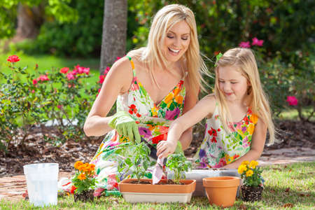 Woman and girl, mother and daughter, gardening together planting flowers and tomato plants in the garden Banque d'images - 116596373