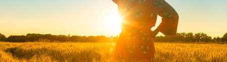 Panoramic web banner African woman in traditional clothes standing, looking, hand to eyes, in field of barley or wheat crops at sunset or sunrise