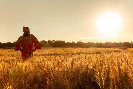 African woman in traditional clothes standing with her hands on her hips in field of barley or wheat crops at sunset or sunrise Imagens