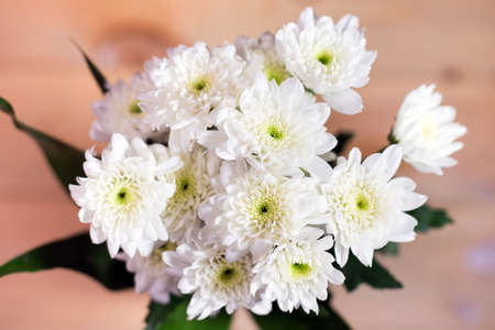 close up white flower on blurry wooden background. Selective focus. Stock Photo