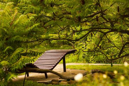 silla de madera: Wooden beach chair on terrace under tree in garden Foto de archivo