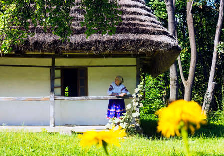 flowered: Old grandmother in flowered dress reading book and basking in sun on sunny terrace of old wooden house with thatched roof of fairy tale in warm summer day