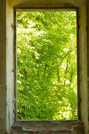 Old window in wall without frame with view of forest