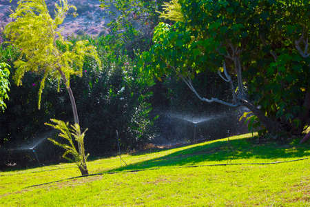 Hoses for automatic watering of green lawns 스톡 콘텐츠