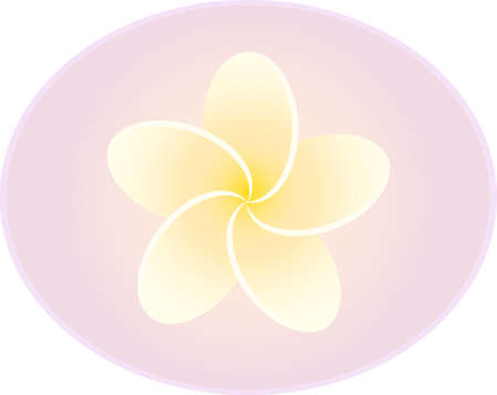 Plumeria flower in pink oval on white background vector, eps 10 Illustration