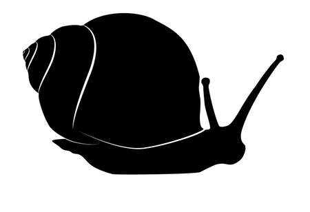 Snail crawling black silhouette isolated on white background. Simple Slug pictogram, 