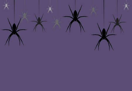 Seamless wild animals pattern hanging Spider black silhouette on purple background. Halloween drawn simple kid print with spooky shadow spiderweb, vector eps 10