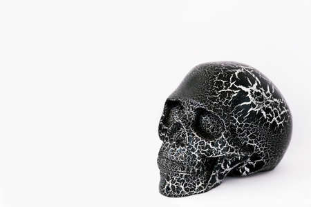Black human skull isolated on white background. Day of Dead (dia de los muertos - in mexican culture) concept for celebration and copy space