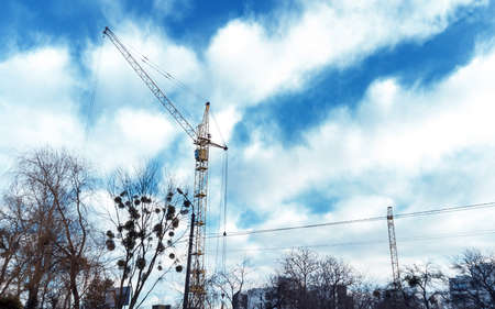 Tower crane by blue cloudy sky and branch of trees. Yellow high construction crane building house