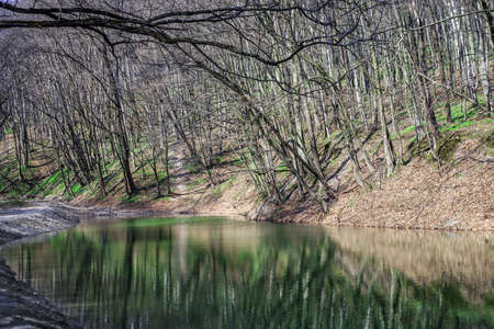 Spring landscape with lake in forest. Reflection of bare trees on water surface in woods 版權商用圖片 - 134876293